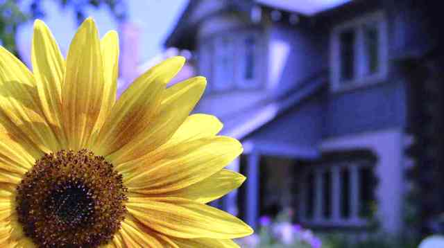Sell-a-home-in-the-spring